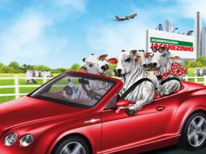 BABENKO agencia publicidade - Touros Jacarezinho