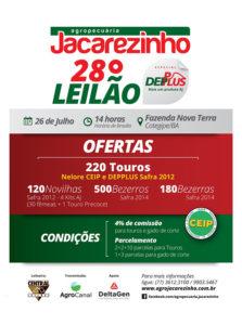 BABENKO agencia publicidade - 28Leilao