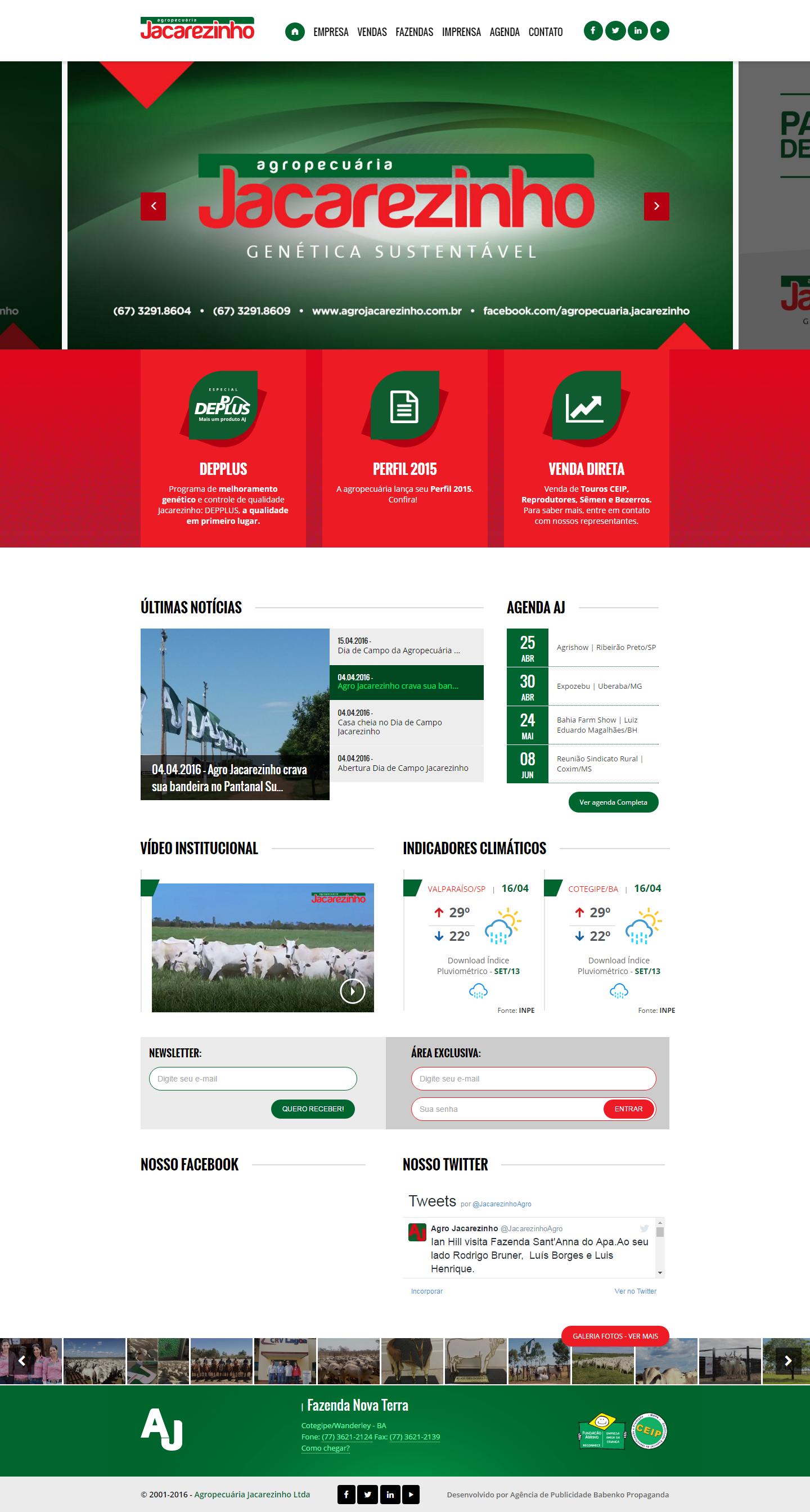 BABENKO agencia publicidade - Desenvolvimento Criação de Design de Sites Agropecuaria Jacarezinho